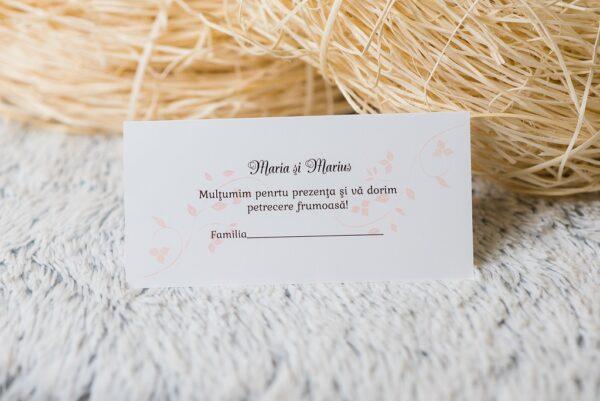 plic-bani-nunta-656-1
